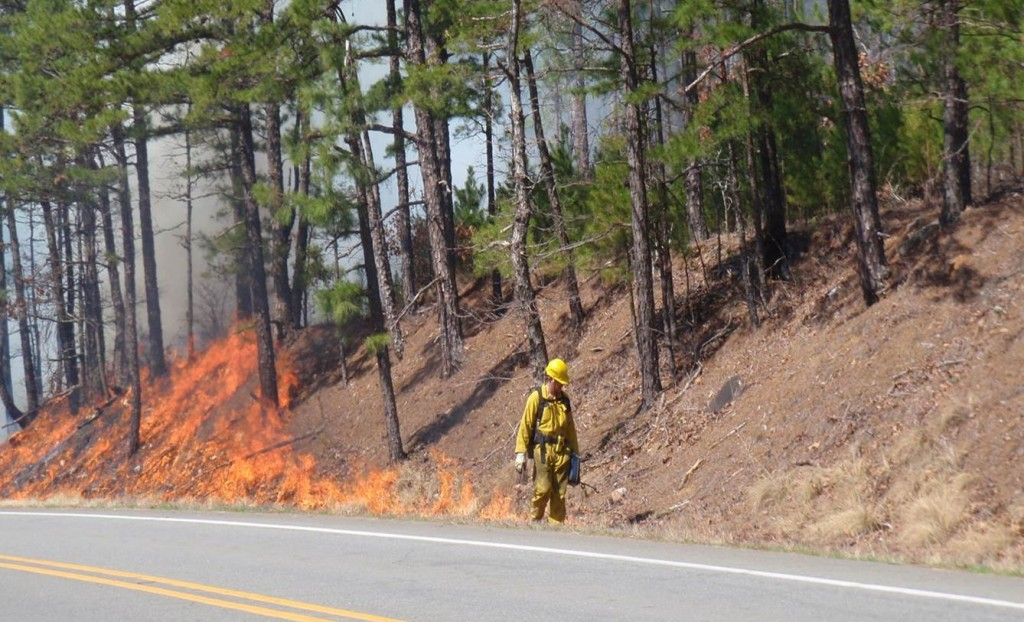 Central Arkansas Water Completes Controlled Burn to Improve
